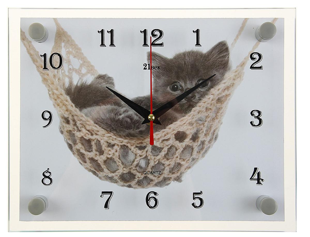 Часы настенные прямоугольные 21 Век Котенок в гамаке, 20 х 26 см2362185Каждому хозяину периодически приходит мысль обновить свою квартиру, сделать ремонт, перестановку или кардинально поменять внешний вид каждой комнаты. — привлекательная деталь, которая поможет воплотить вашу интерьерную идею, создать неповторимую атмосферу в вашем доме. Окружите себя приятными мелочами, пусть они радуют глаз и дарят гармонию.— сувенир в полном смысле этого слова. И главная его задача — хранить воспоминание о месте, где вы побывали, или о том человеке, который подарил данный предмет. Преподнесите эту вещь своему другу, и она станет достойным украшением его дома.Часы настенные прямоугольные Котенок в гамаке, 20х26 см 2362185