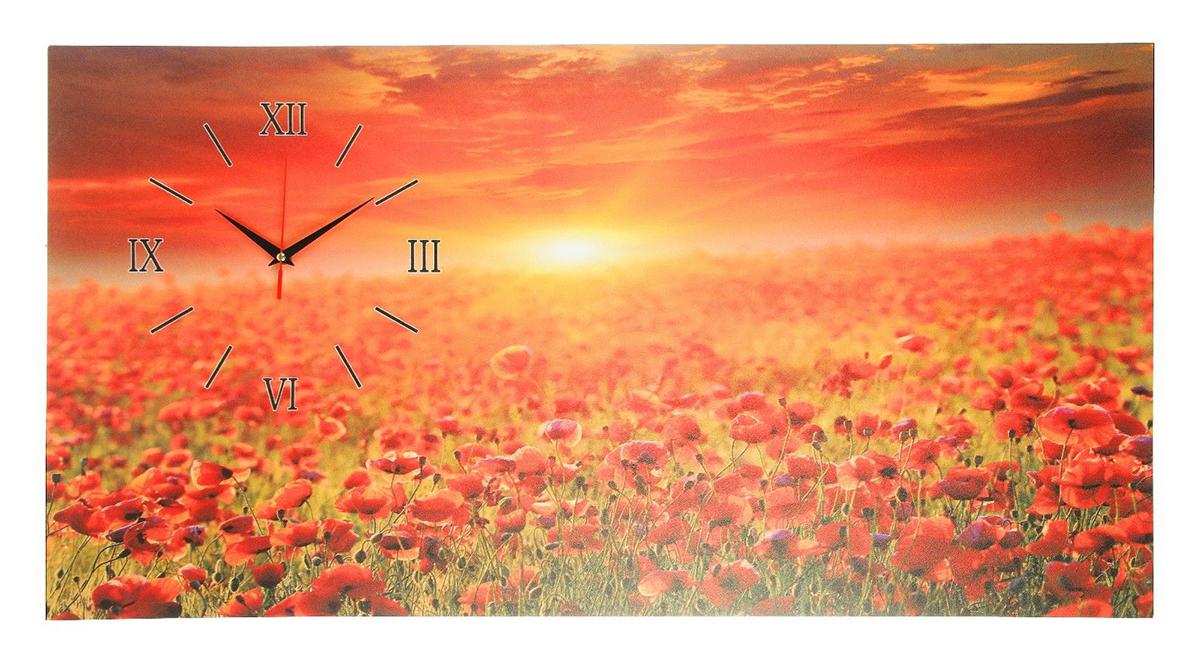 Часы настенные на холсте Сюжет Поле красных цветков2570072Каждому хозяину периодически приходит мысль обновить свою квартиру, сделать ремонт, перестановку или кардинально поменять внешний вид каждой комнаты. — привлекательная деталь, которая поможет воплотить вашу интерьерную идею, создать неповторимую атмосферу в вашем доме. Окружите себя приятными мелочами, пусть они радуют глаз и дарят гармонию.Часы на холсте Поле красных цветков, 50х100 см 2570072