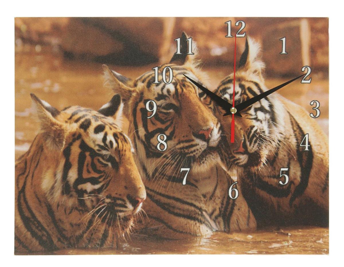 Часы настенные на холсте Сюжет Три тигра, 30 х 40 см хочу продать свою квартиру которая менее 3х лет и другую какие налоги надо заплатить