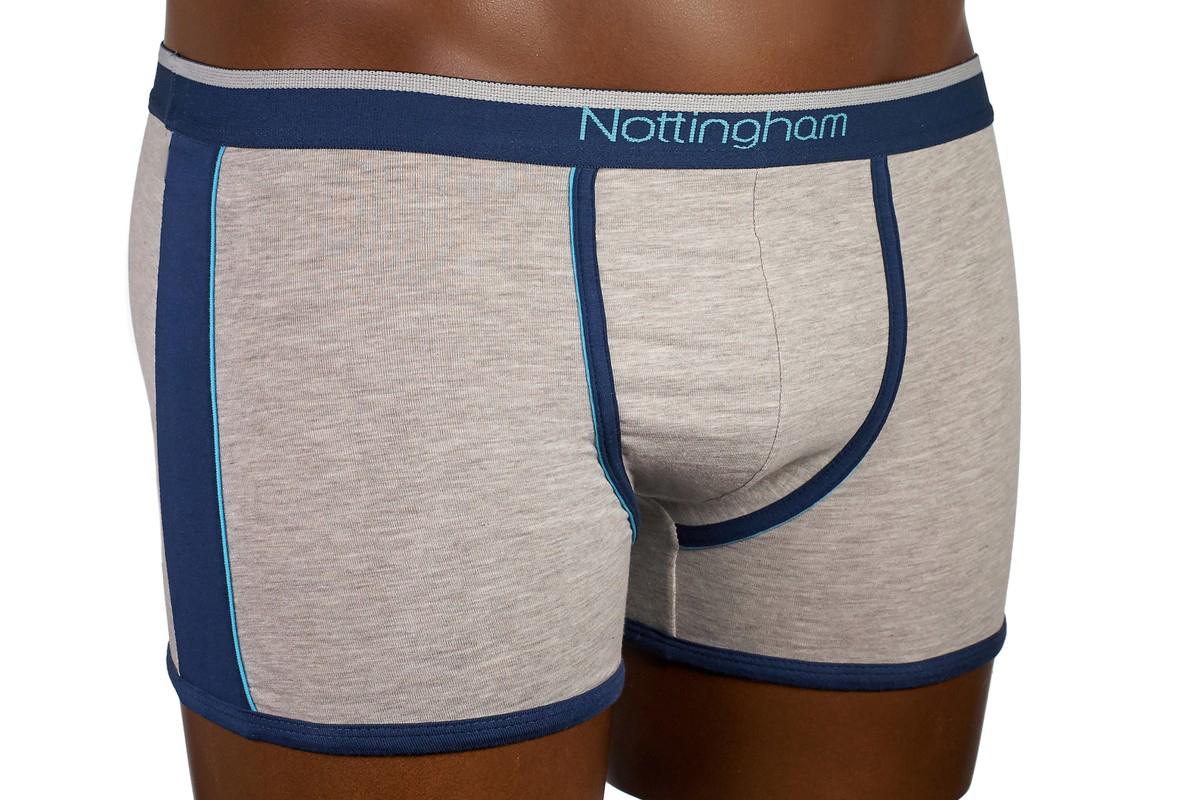 Трусы-боксеры мужские Nottingham, цвет: светло-серый. 15878. Размер XXL (54) цены онлайн