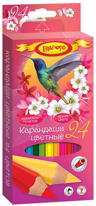 Limpopo Набор цветных карандашей Колибри 24 шт -  Карандаши