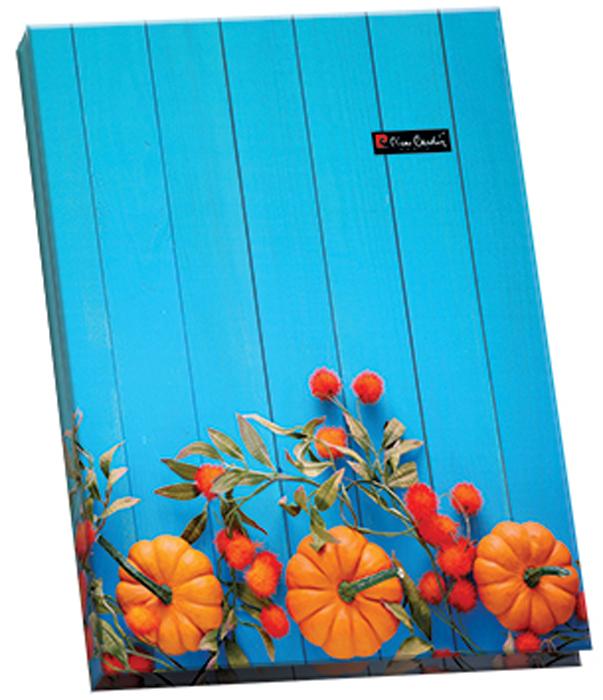 Pierre Cardin Папка с металлическим прижимом Provence чулки pierre cardin чулки