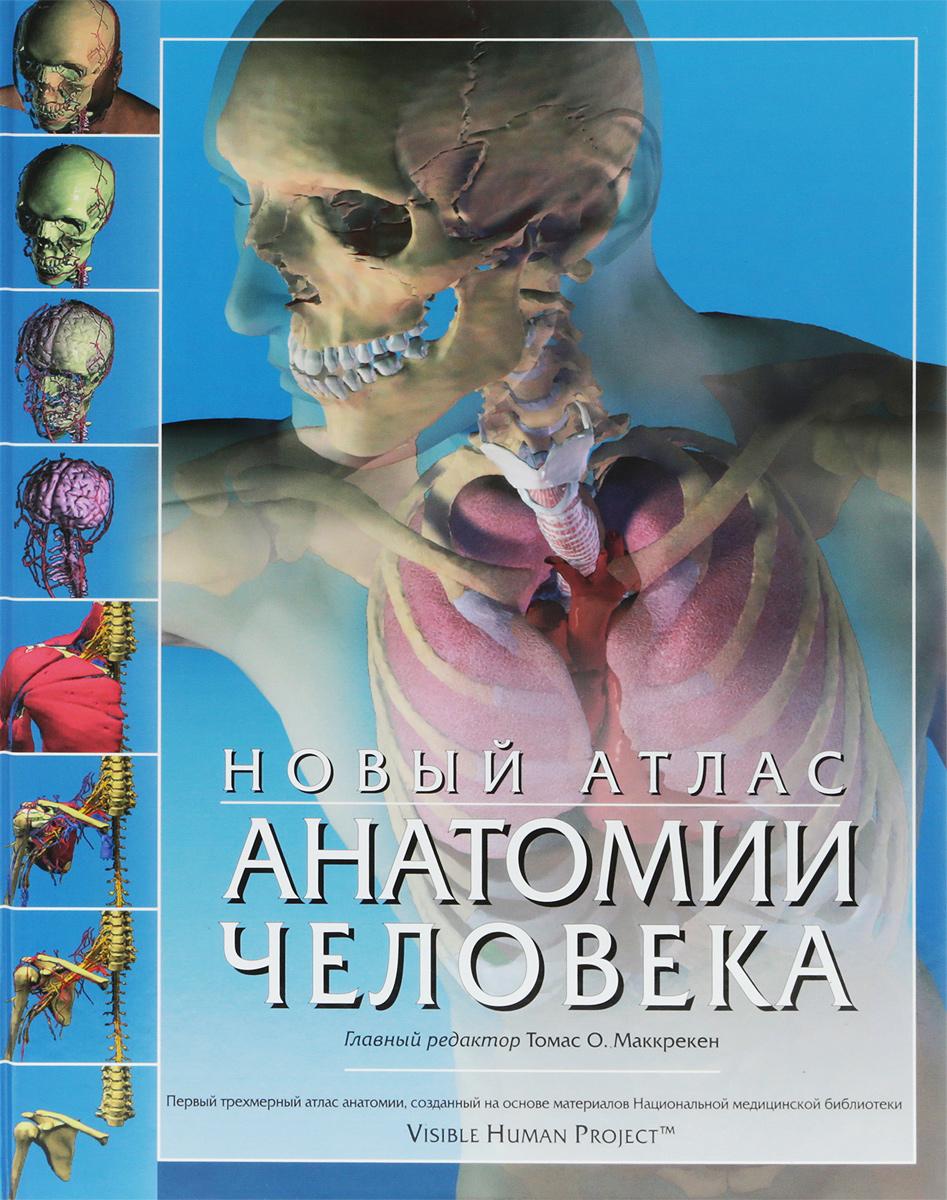 Под редакцией Томаса Маккрекена, Ричарда Уолкера Новый атлас анатомии человека винсент перез большой атлас анатомии человека