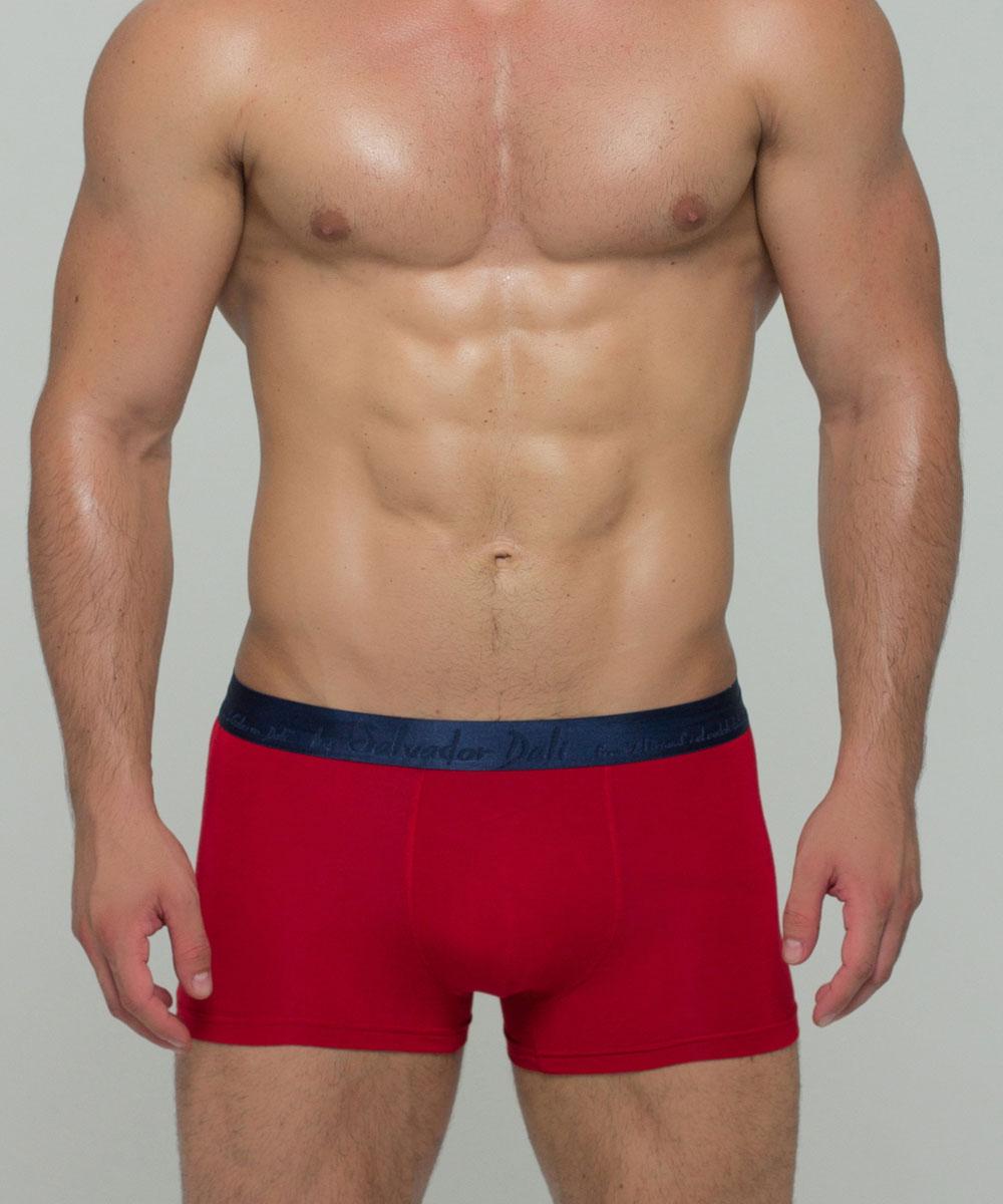 Трусы-боксеры мужские By Salvador Dali, цвет: красный. SD2016-4. Размер L (48)SD2016-4Мужские трусы-боксеры от бренда by Salvador dali выполнены из мягкой, приятной для тела, бамбуковой ткани. Широкая, шелковистая резина, премиальная однотонная ткань, высокие стандарты пошива и обработки швов, создают классику стиля и обеспечивают максимальный комфорт ношения для требовательных к качеству мужчин.