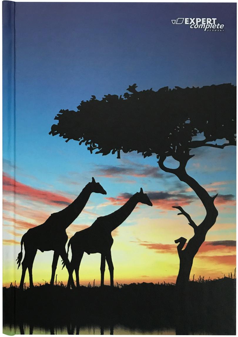 Expert Complete Ежедневник Africa недатированный 288 листов цвет голубой синий формат A58318176Ежедневник - незаменимая вещь для любого человека, он позволяет не упустить из виду важныемоменты вашей жизни, держать под контролем ваши дела, планировать ваш день, записыватьидеи и важную информацию. Ежедневник Expert Complete, недатированный с твердой обложкой,блок оснащен удобной закладкой-ляссе, это отличное сочетание интересного дизайна исовременного материала по лучшей цене.