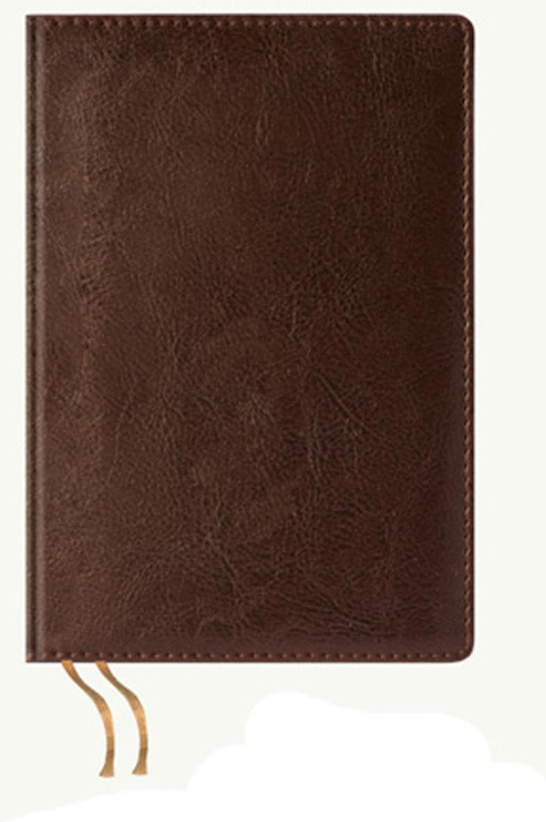Maestro de Tiempo Ежедневник Estilo недатированный 288 листов цвет коричневый формат A5 обложки maestro de tiempo обложка для паспорта heart