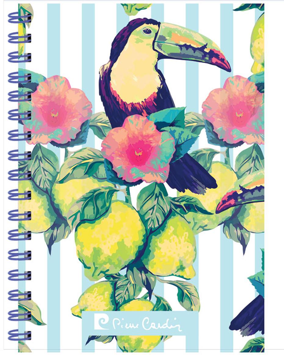 Pierre Cardin Тетрадь Tropic Exotic 80 листов в клетку цвет разноцветный формат A5 папки канцелярские pierre cardin папка каталог 40 листов geometrie pink