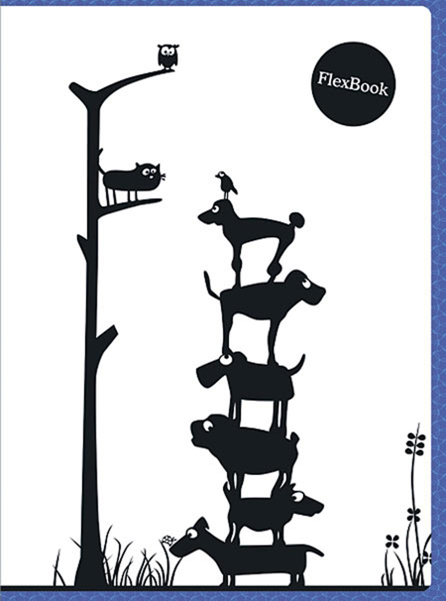 Expert Complete Тетрадь Animals 80 листов в клетку цвет белый черный синий формат A4 -  Тетради