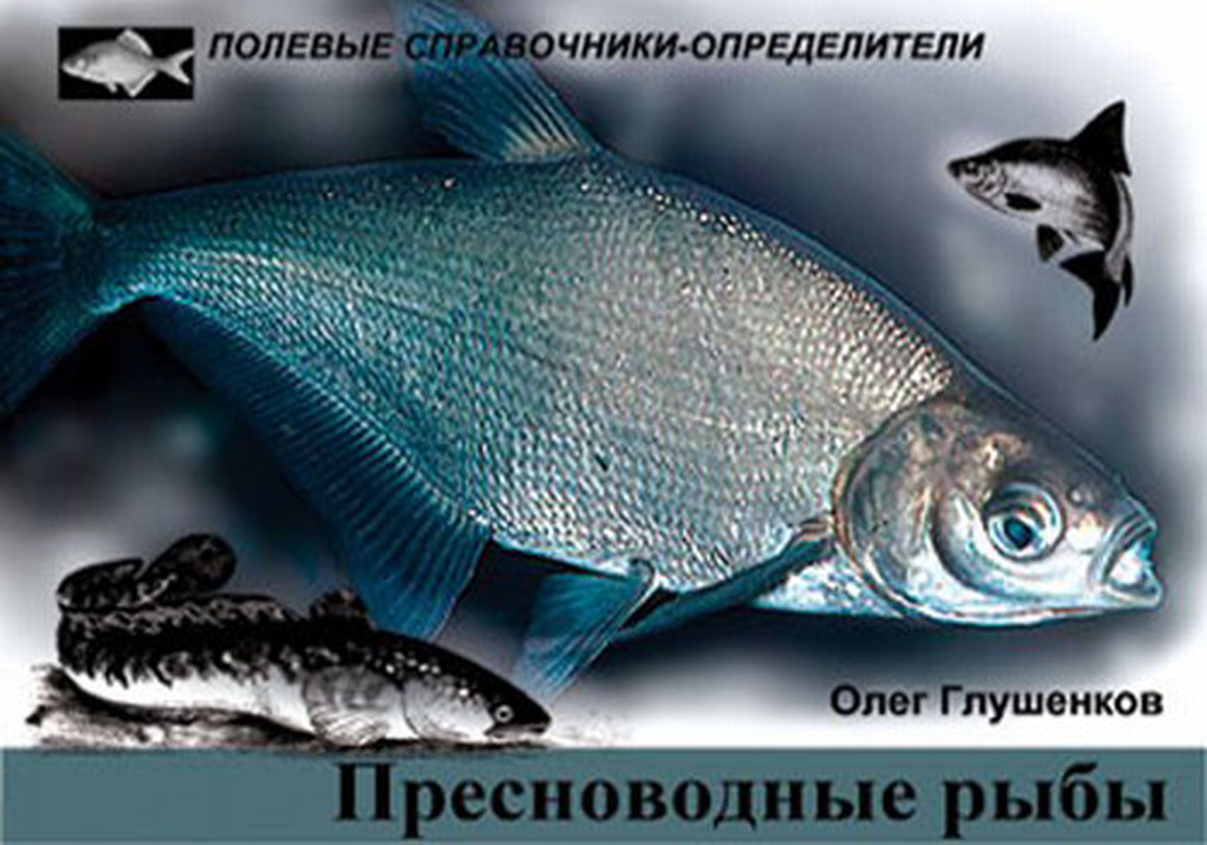 Олег Глушенков Пресноводные рыбы. Карманный определитель глушенков о пресноводные рыбы