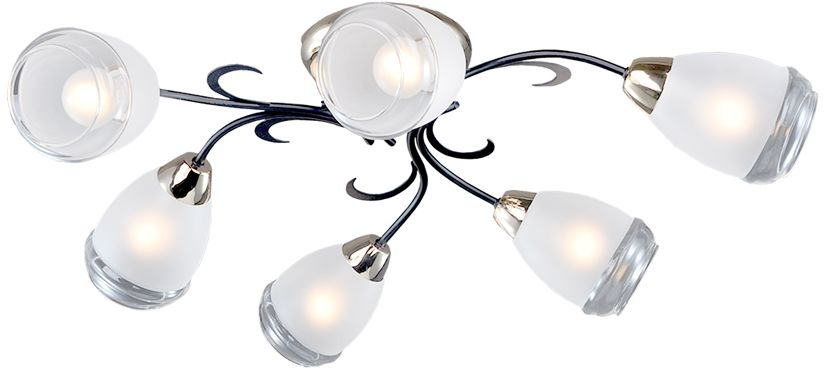 Люстра Максисвет Универсал, 6 х E14, 60W. 1-8665-6-FG+BK E141-8665-6-FG+BK E14В коллекции «Универсал» каждый сможет найти светильник на свой вкус и для любогопомещения: потолочные или подвесные люстры, с круглыми или квадратнымистеклянными плафонами, в форме фонариков или цветов.Разнообразные виды люстр и бра собраны в этой универсальной коллекции. Здесьпредставлены элегантные классические люстры, подвесы с плафонами из матового ипрозрачного стекла в стиле модерн, светильники с элементами ковки, текстильнымиабажурами и хрустальными декоративными элементами.Модели в коллекции «Универсал» объединяет демократичная цена, которая делаетразные по стилистике светильники одинаково доступными каждому покупателю.