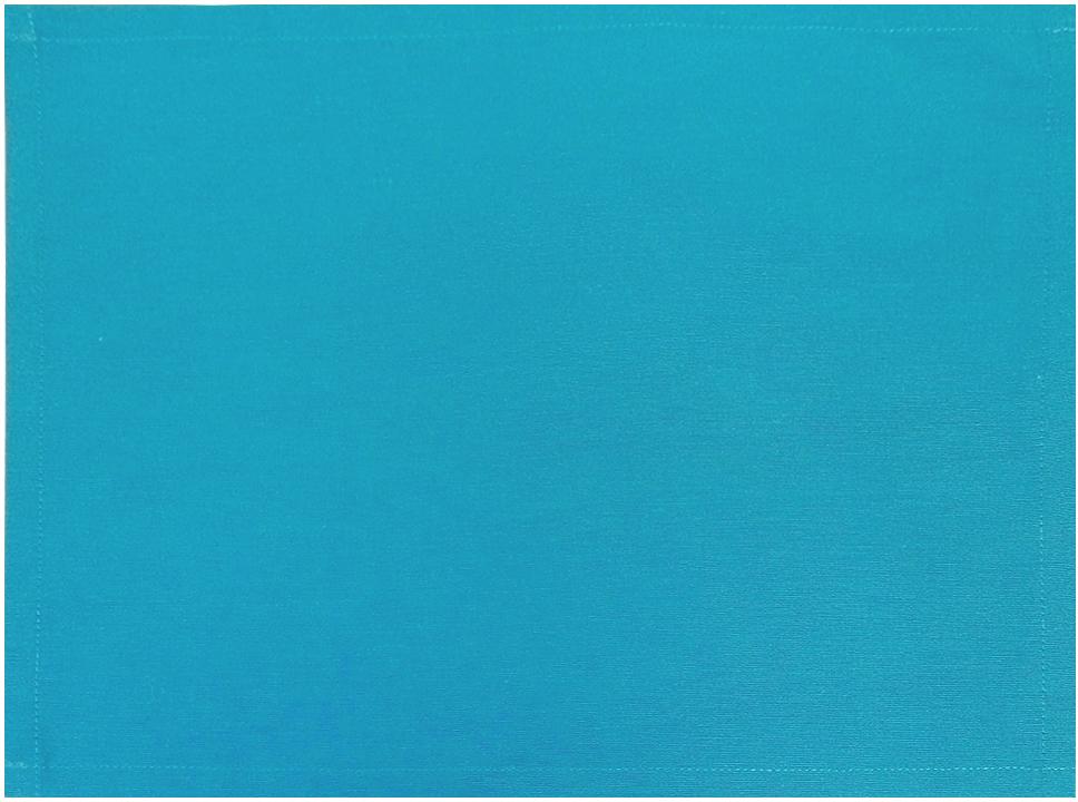 Салфетка для сервировки стола Altali, цвет: голубой, 40 х 30 смP710-Z145/1Тканевая салфетка Altali - это стильный и функциональный элемент сервировки стола.Салфетка позволяет защитить скатерть от небольших загрязнений и смягчить звук отсоприкосновения столовых приборов со столешницей. Используя салфетки со скатертью илидорожкой на стол из одноименных коллекций, вы с легкостью добьетесь красивого игармоничного убранства столовой.Для еженедельного ухода рекомендуется ручная илиавтоматическая стирка.