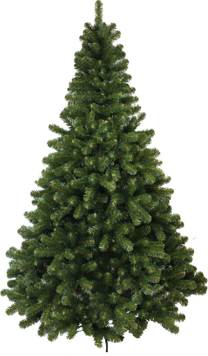 Ель искусственная Morozco Звездная, напольная, 240 см1010924Великолепная новогодняя елочка с длинной мягкой хвоей действительно заслуживает звёздного статуса!Эта ель притягивает взгляд своими уютно-пушистыми ветвями, изумительным классическим силуэтом и насыщенным цветом хвои. Звездная красавица просто излучает чудесное ощущение праздника и настоящей лесной свежести, ведь она выглядит абсолютно натурально! Хвоя - PVC. Цвет хвои - зеленый. Имеет металлическую подставку, обеспечивающую устойчивость. Ель имеет шарнирное крепление веток, чтобы ее собрать, достаточно просто отогнуть ветки. Поставляется в коробках из плотного картона, предполагающих многолетнее хранение. Ветви после хранения очень быстро восстанавливают форму. Искусственная ель - прекрасный вариант для оформления вашего интерьера к Новому году. Такие деревья абсолютно безопасны, удобны в сборке и не занимают много места при хранении.