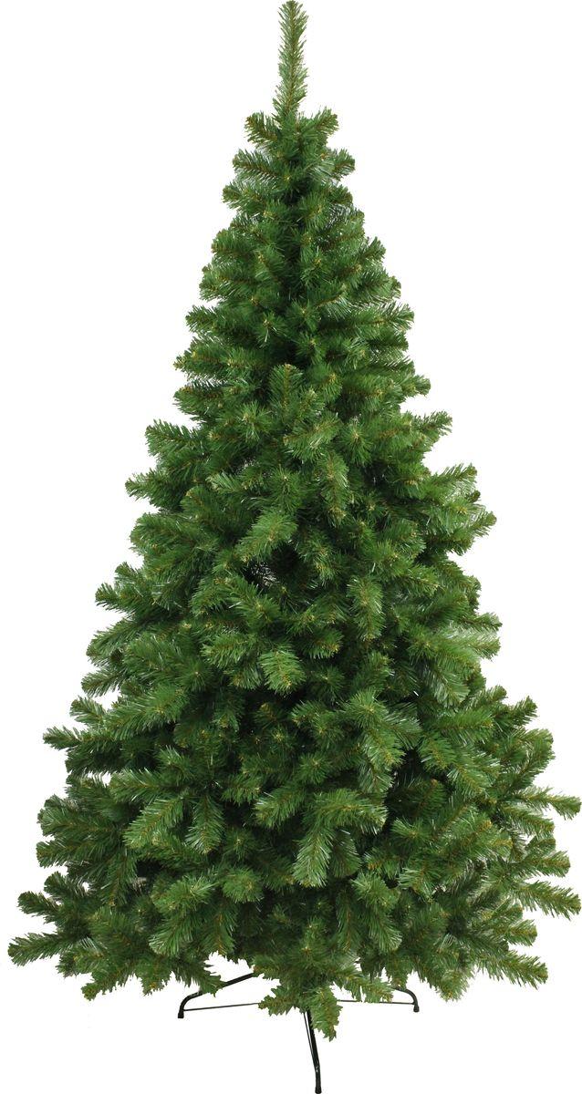 Ель искусственная Morozco Скандинавская, напольная, 240 см2224Северная стройная сосна с классическим вытянутым силуэтом. Приятный сочный зеленый цвет, великолепная имитация древесины, просвечивающей сквозь пышные иголки, приподнятые вверх побеги придают этой ели особое очарование. Зимний праздник и новогоднее настроение подарит вам эта стройная северная красавица! Хвоя - PVC. Ель имеет шарнирное крепление веток, чтобы ее собрать достаточно просто отогнуть ветки. Поставляется в коробках из плотного картона, предполагающих многолетнее хранение. Ветви после хранения очень быстро восстанавливают форму. Искусственная ель - прекрасный вариант для оформления вашего интерьера к Новому году. Такие деревья абсолютно безопасны, удобны в сборке и не занимают много места при хранении.