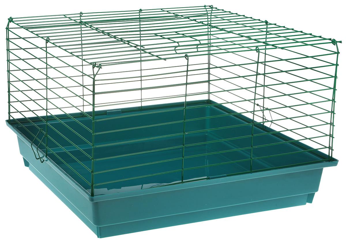 Клетка для кроликов ЗооМарк, цвет: морская волна, зеленая решетка, 59 х 40 х 35 см620СЗ_морская волна, зеленая решеткаКлетка для кроликов ЗооМарк, выполненная из металла и пластика, предназначена для содержания вашего любимца. Клетка имеет прямоугольную форму, очень просторна, оснащена съемным поддоном. Она очень легко собирается и разбирается.Такая клетка станет для вашего питомца уютным домиком и надежным убежищем.