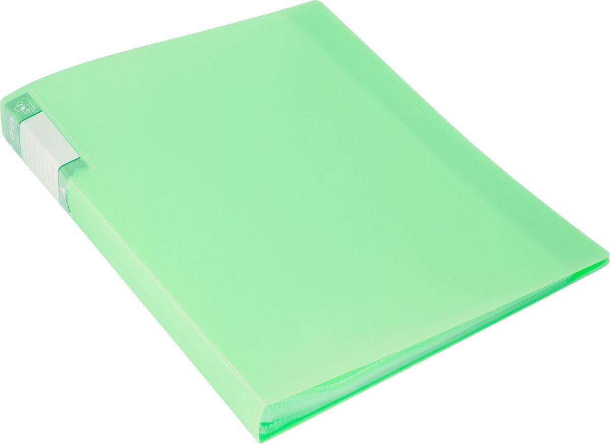 Бюрократ Папка с файлами Gems А4 40 листов цвет светло-зеленый 1014865