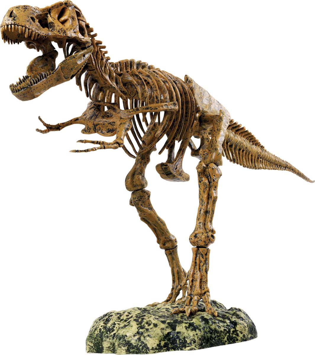 Edu-Toys Набор для 3D моделирования Скелет динозавра