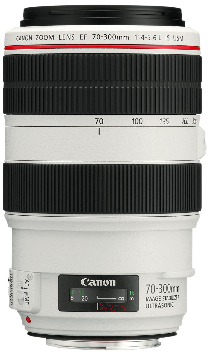 Canon EF 70-300 mm 4-5.6L IS USM, White объектив