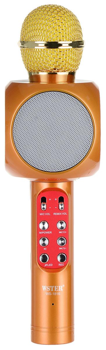 Karaoke Boom KB-WS1816RU, Gold микрофон