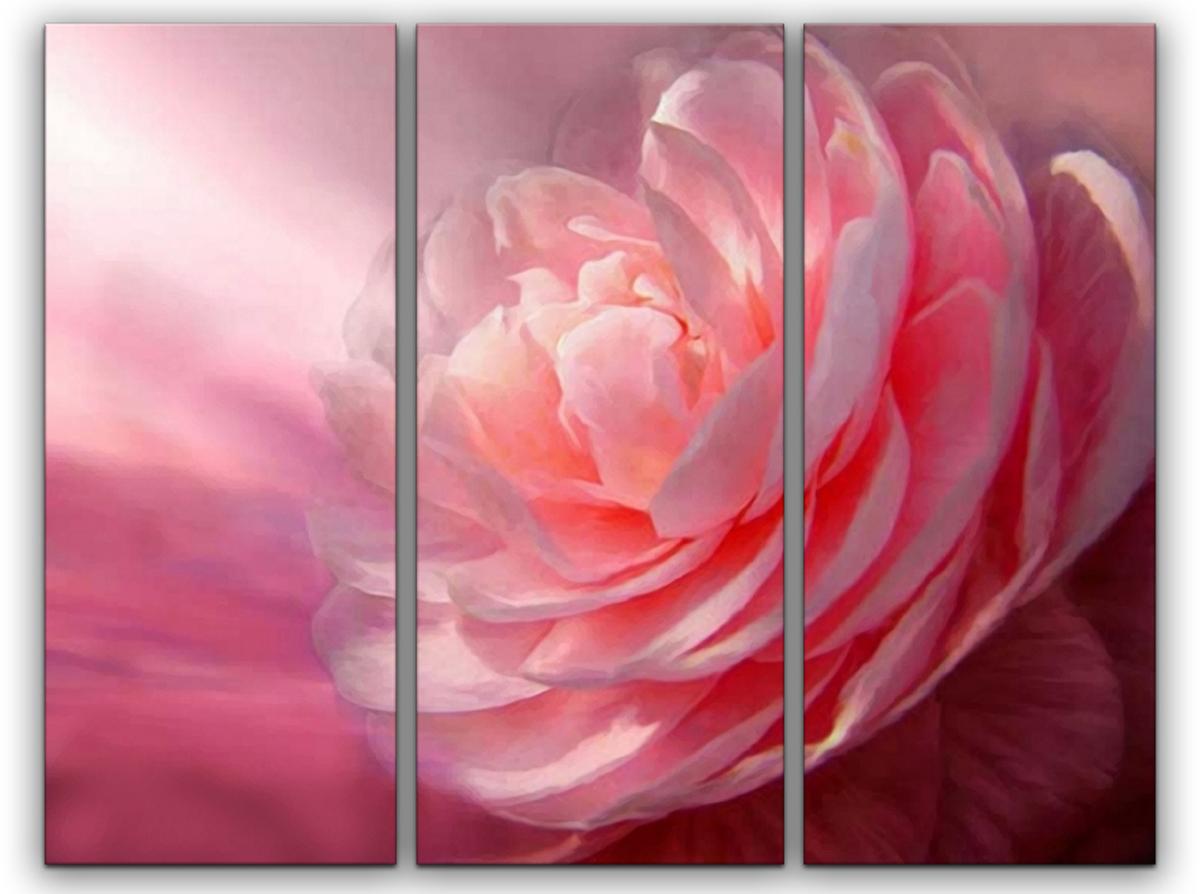 Картина модульная Картиномания Красивый цветок, 90 х 57 смАРТ-М751SВ состав входит комплект креплений и инструкция по креплению на стену.