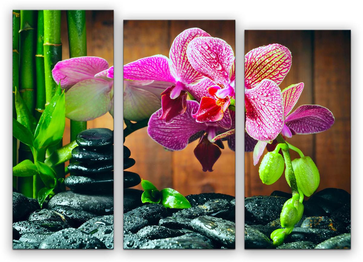 Картина модульная Картиномания Триптих орхидеи, 90 х 67 смАРТ-М885SВ состав входит комплект креплений и инструкция по креплению на стену.