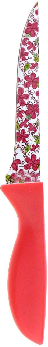 Нож кухонный Miolla, цвет: красный, длина лезвия 15 см1508119UУниверсальный нож от Miolla будет незаменим на кухне и легко разрежет любые виды продуктов. Нож оснащен лезвием из нержавеющей стали с декорированным покрытием. Нож легко моется - достаточно ополоснуть его в теплой воде и вытереть насухо полотенцем. Эргономичная рукоятка с протектором для пальцев удобно лежит в руке и обеспечивает комфортную резку. Не подходит для мытья в посудомоечной машине.