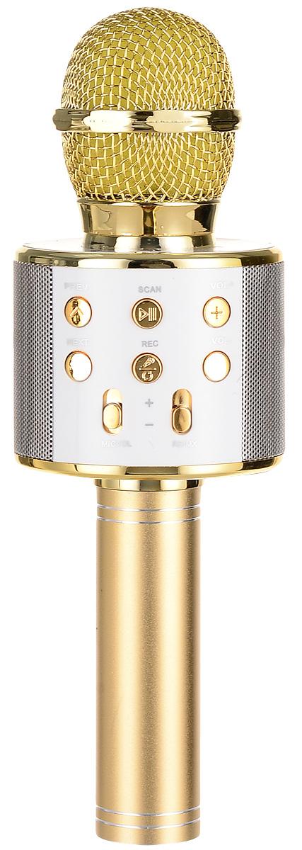 Karaoke Boom KB-WS858RU, Gold микрофонBP-00001203Беспроводные караоке-микрофоны Karaoke Boom – самая желанная новинка всех любителей петь под музыку. С ними можно петь абсолютно везде - дома, в гостях, на природе, в машине, самолете или поезде. Особенность состоит в том, что данное устройство выполняет как функцию микрофона, так и портативной колонки. Музыка и голос воспроизводятся одним компактным микрофоном. Музыка и отличное настроение Вам обеспечено вместе с Karaoke Boom!Яркий, выделяющийся дизайн, чистый и громкий стерео звук создадут неповторимое ощущение праздника и веселья. В микрофонах использованы самые современные технологии обработки голоса, что позволяет ему звучать по-настоящему профессионально, технологии интеллектуального снижения шума. Достаточно всего лишь подключиться к смартфону через Bluetooth, в микрофоне заиграет музыка – и можно начинать петь! Работает со смартфонами Android или IOS и абсолютно всеми приложениями для караоке. Можно записать исполнение, чтобы потом поделиться с близкими. На корпусе микрофона расположены кнопки включения/выключения музыки, регулировки громкости/перехода к предыдущему-следующему треку и включения самого устройства, а также дополнительные режимы. Мощный встроенный аккумулятор, позволяет петь от 6 до 12 часов (в зависимости от модели).Почувствуйте себя звездой вместе с караоке-микрофонами Karaoke Boom! Karaoke Boom KB-WS858RU – одна из наиболее популярных моделей, пользуется спросом как среди новичков, так и профессионалов караоке. Стильный, яркий дизайн притягивает взгляды, качественный мощный звук – внимание аудитории. Выполнен из прочного металла. Интеллектуальное снижение шума. Поставляется в удобном прочном кейсе.Технические характеристики: Интеллектуальное снижение шума. Может быть использован как громкоговоритель. Полностью выполнен из металла. 3 способа подключения: Bluetooth, проводное соединение AUX или USB (возможность проигрывать музыку с флеш-носителей). Встроенный слот под карту памяти. 2 HD динамика