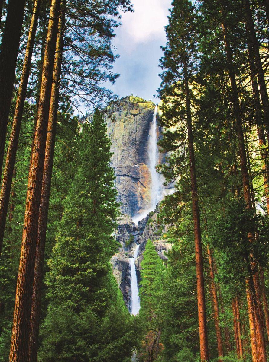 """Фотообои """"Водопад в соснах"""" создают величественную гармонию и дарят незабываемый прилив энергии и положительных эмоций. Фотообои печатаются на чистом флизелине. Преимущества:• качественный, импортный, экологически чистый материал;• простота наклеивания;• длительный срок службы."""