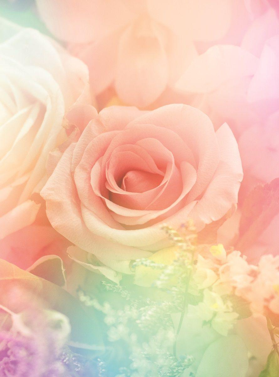 Фотообои флизелиновые Московская обойная фабрика Розы, 200 х 270 см6124-МФотообои Розы, создадут благоухающую стену из роз, которой вы будете наслаждаться долгое время. Вас будут радовать разнообразие инеповторимость каждого цветка. Фотообои печатаются на чистом флизелине. Преимущества:• качественный, импортный, экологически чистый материал;• простота наклеивания;• длительный срок службы.