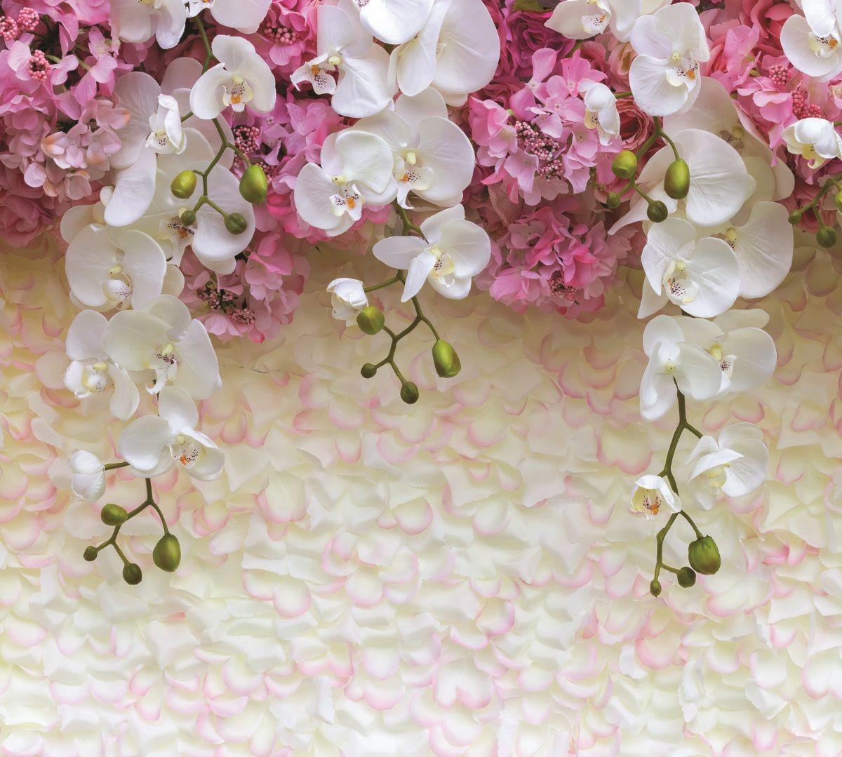 Фотообои флизилиновыеМосковская обойная фабрика Орхидеи, 300 х 270 см6129-МЭкологически чистые флизилиновые фотообои Орхидеи, 3,0х2,7м 6129-М