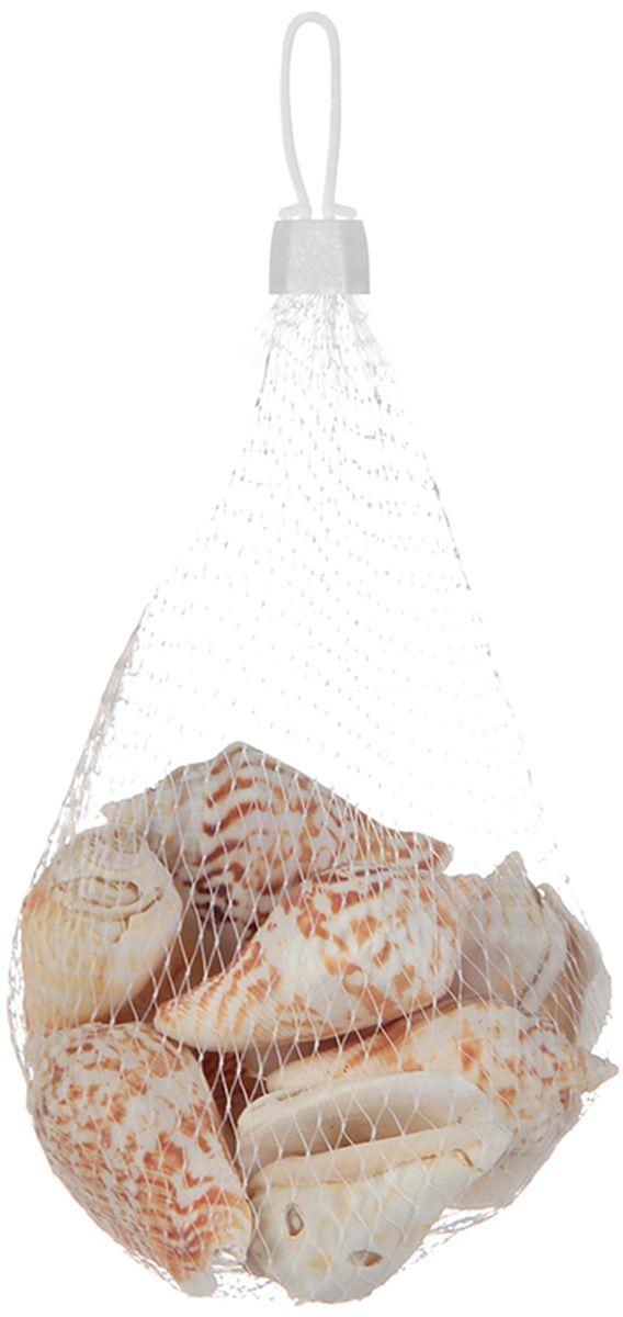 Украшение декоративное Elan Gallery Дары Желтого моря171278Декоративные ракушки разных форм и размеров. Их можно использовать для составления мозаики, создания декоративных панно, флористики, оформления аквариумов, детского творчества и украшения дома своими руками.
