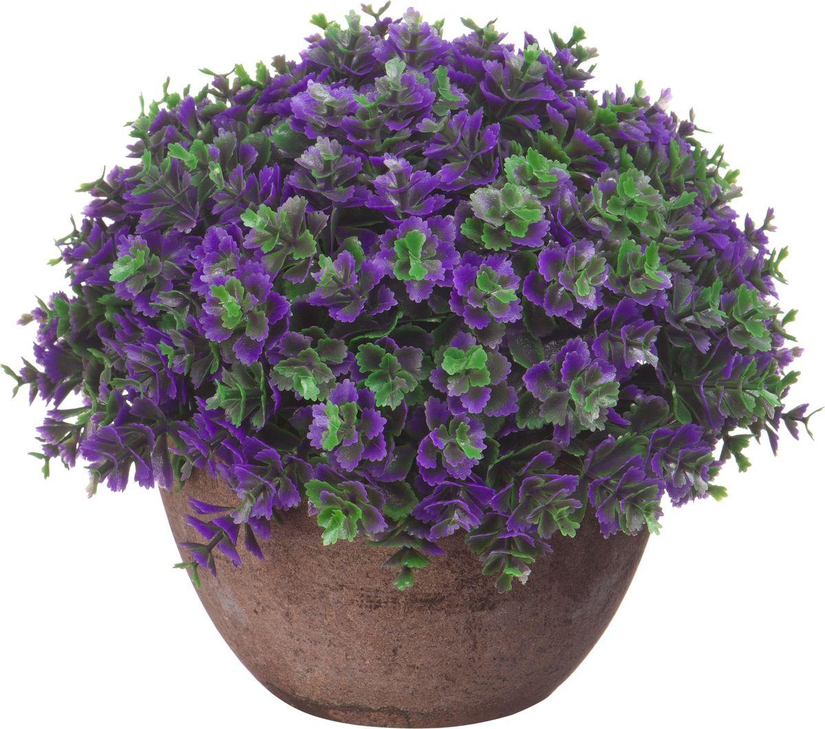 Композиция цветочная Engard Азалия, в кашпо, цвет: фиолетовый, 15 х 13,5 смB18фиолИскусственные цветы Engard - это популярное дизайнерское решение для создания природного колорита и гармонии в пространстве. Декоративная азалия высотой 15 см выглядит аккуратно и довольно реалистично. Керамический горшок цвета эспрессо прекрасно впишется в любой интерьер.
