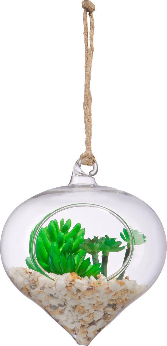 """Декоративная подвесная конусообразная ваза Engard """"Конус"""", с оригинальным наполнением, изготовлена из стекла.  Ваза станет прекрасным украшением в помещении."""