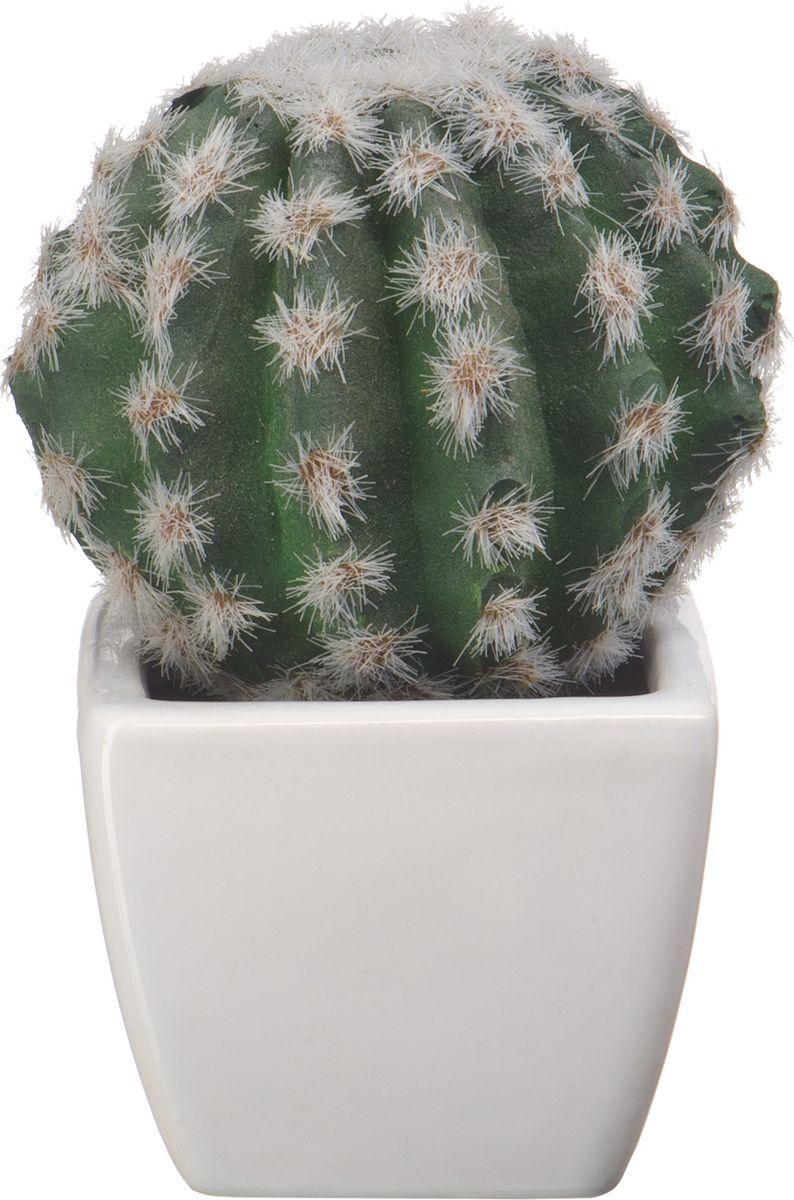 Композиция цветочная Engard Кактус, в кашпо, 18 х 7 х 7 см кашпо тд дм ящик любовь флористическое 20 х 16 х 9 5 см