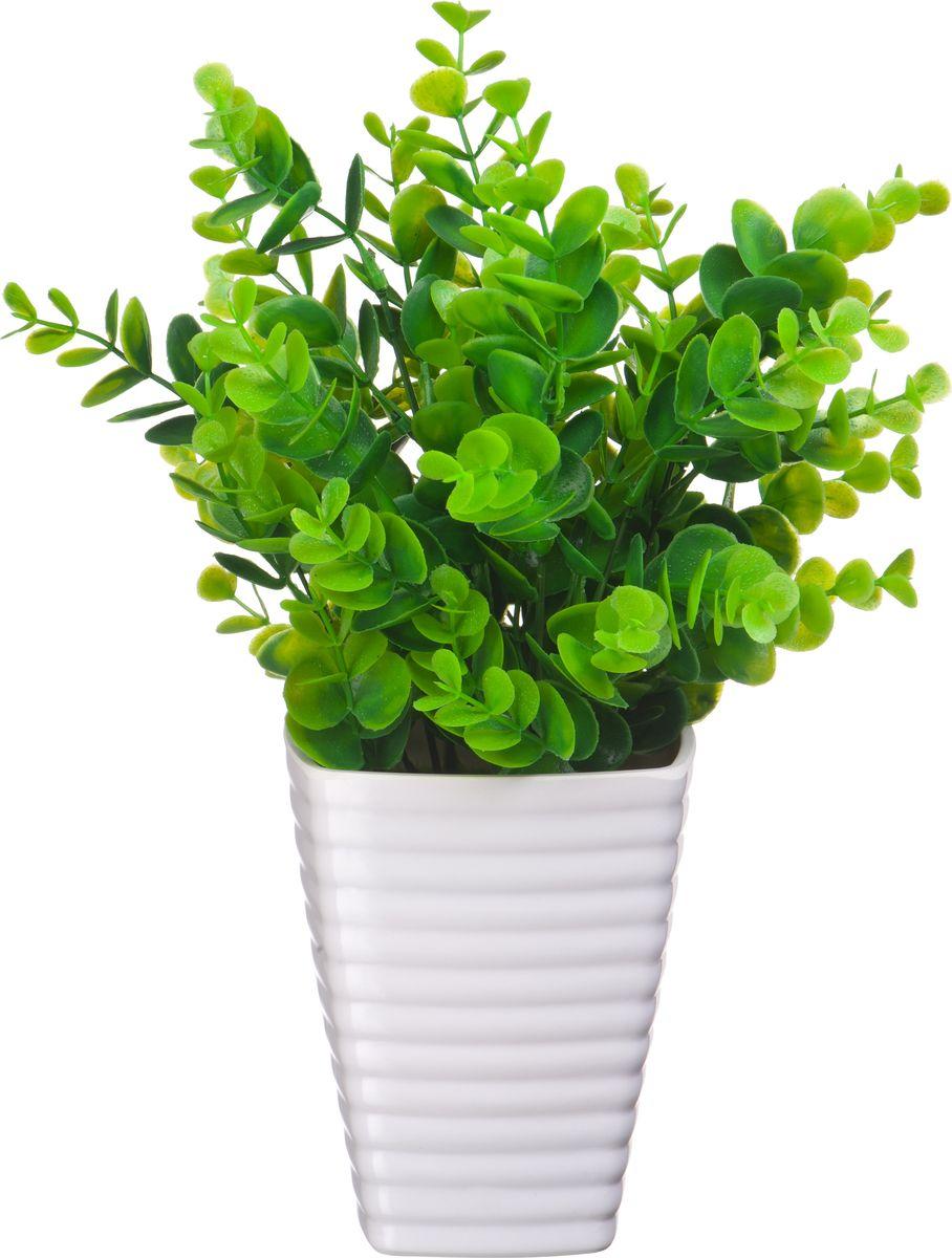 Композиция цветочная Engard Солейролия, в кашпо, 17 х 20 смB52Декоративная солейролия в кашпо высотой 20 см выглядит аккуратно и довольно реалистично. Искусственное растение - это уникальное флористическое решение для создания природного колорита и гармонии в интерьере. Не требует постоянного ухода.