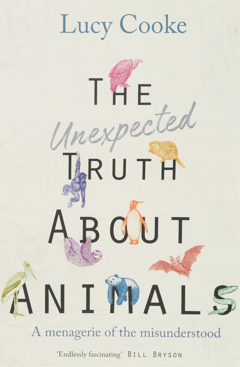 The Unexpected Truth About Animals seeing things as they are