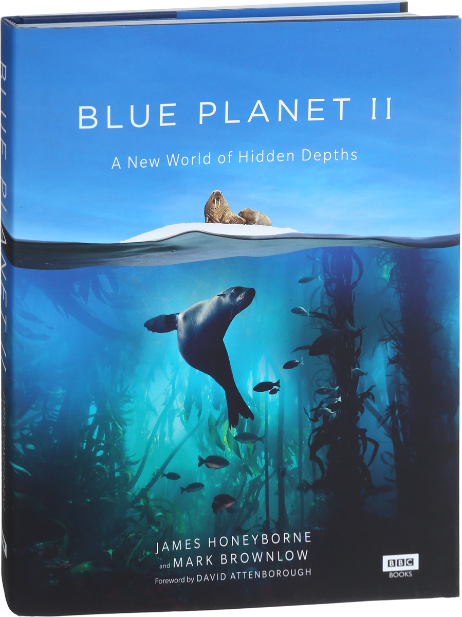 Blue Planet II song for the planet