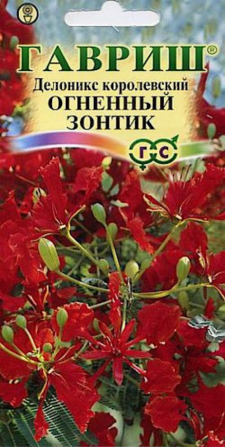 Это полувечнозеленое дерево вырастает до 10 м, напоминает своей раскидистой кроной широкий зонт. Элегантные ярко-зеленые, дважды перистые листья длиной 30-50 см, складываются на ночь.В нашей зоне делоникс выращивается, как комнатное растение. Весной и в начале лета дерево покрывается крупными ярко-красными цветами, около 10 см в диаметре, собранными в большие кисти.Цветы по красоте могут соперничать с орхидеями, состоят из четырех красных лепестков с «ножкой» и одного более крупного вертикального лепестка с желтыми и белыми пятнами. Пылающие драгоценными цветами деревья представляют собой восхитительное зрелище, продолжающееся в течение 1-2 месяцев. Позже образуются одревесневшие плоские стручки длиной до 60 см, содержащие крупные семена. Делоникс предпочитает прямое солнце, равномерное тепло и влажность. Почва должна быть рыхлой и легкой, ей необходим хороший дренаж. Неприхотлив к качеству грунта и может хорошо развиваться в широком диапазоне рН. Семена делоникса имеют очень твердую оболочку, которую перед замачиванием в воде скарифицируют либо размягчают ( обдав кипящей водой или кислотой), затем замачивают в течении 1-2 суток в теплой воде, а затем перед высадкой в грунт оболочку удаляют. Жизнеспособные и правильно обработанные семена обычно прорастают через 1-2 недели, в противном случае прорастание может затянуться на несколько месяцев.