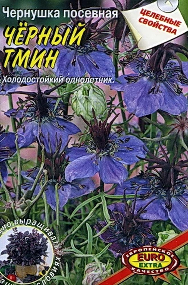 Семена Аэлита Чернушка. Черный тмин семена кл евера в с пб
