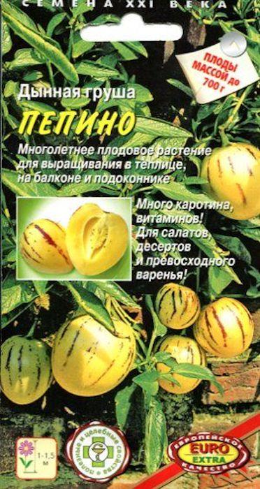 Семена Аэлита Пепино. Дынная груша4680006842277Многолетнее плодовое растение для выращивания в теплице, на балконе и подоконнике.Solanum muricatum PepinoПлоды похожи на грушу, а по вкусу - на дыню, крупные, массой 200-700 г. При созревании становятся лимонно-желто-оранжевыми, с сиреневыми полосками.Зрелые плоды подают на десерт, используют во фруктовых салатах или варят из них превосходное варенье. Недозрелые плоды добавляют в салаты вместо огурцов (очищая от кожицы). Мякоть зрелого плода кисло-сладкая и очень сочная, как сочная ароматная дыня, с оттенком тропических фруктов, иногда с лёгким перечным вкусом.Богата на каротин, железо и пектиновые вещества. Содержание витамина С такое же как в цитрусовых, велико содержание витаминов А, В1, В2 и PP.Как выращивать семена дыни-груши ПепиноКак у томатов (растение из семейства Паслёновых, короткого светового дня). Любит рыхлую, плодородную, нейтральную почву, тепло и свет, не терпит переувлажнения и пересыхания.Выращивают: в теплице, на южном балконе или на подоконнике (в комнате: зимой на 2 месяца сокращают полив и освещение, температуру опускают до 6-8°С). К весне можно получить черенки.Посев: в конце февраля в ящики на окне с южной стороны, укрывают плёнкой. t°= 26-28°С. Всходы - в течение двух недель.Высадка рассады: В пленочную теплицу в 60-90-дневном возрасте, обычно в конце мая. Растения формируют в два-три стебля.Уход: во время цветения растений в солнечную погоду теплицу проветривают. t° не ниже 16-18°С ночью и не выше 26-28°С днем.Для получения крупных плодов в кисти оставляют 1-2 плода.Подкормки: настоем коровяка (1:10), птичьего помета (1;20), а также рекомендуем специальное комплексное минеральное удобрение.Сбор урожая: на 120-150-й день после появления всходов или на 75-й день после их завязывания. Признаки созревания плодов: образование сиреневых полосок, пожелтение кожицы, появление дынного аромата.
