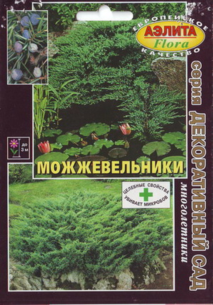 Семена Аэлита Можжевельник4680006844844МноголетникВысота растения до 30 мВечнозеленый зимостойкий, засухоустойчивый, теневыносливый.Juniperus virginianaВечнозеленые, однодомные, реже двудомные деревья, до 30 м высотой, в молодости с узкояйцевидной кроной, которая позднее формируется широко отстоящими ветвями. Ствол покрыт серой, темно-бурой или красно-бурой, продольно-трещиноватой, отслаивающейся корой, зеленой у молодых побегов. Побеги тонкие, неясно четырехгранные. Хвоя мелкая, чешуевидная, или игловидная, темно-зеленая. Общий тон облиствления темно-зеленый или сизо-зеленый, в зимний период буро-зеленый. Распространен в парках как один из наиболее декоративных и устойчивых можжевельников. В северных широтах заменяет пирамидальный кипарис. Особенно красив Можжевельник виргинский осенью, когда крона украшена нежно-голубыми шишкоягодами долго остающимися на ветвях. Растение прекрасно смотрится в одиночной посадке на газоне и в живых изгородях. Хорошо сочетается с туей, березами, соснами, белой акацией, лиственницами, кипарисовиками, низкорослыми кустарниками. Декоративен особенно в молодом возрасте!Этот хвойный кустарник чрезвычайно полезен. Испаряет большое количество фитонцидов (очищают атмосферу от болезнетворных микроорганизмов).Агротехника: Зимостоек, засухоустойчив, светолюбив, малотребователен к почве, устойчив к дыму и газам, обладает почвозащитными свойствами. Благодаря укоренению лежащих на поверхности почвы ветвей, быстро разрастается в ширину, образуя плотные заросли. Растет на известковых или каменистых почвах. Малотребователен к плодородию и влажности почвы, но плохо переносит сухость воздуха.Семена перед посевом стратифицируют. Высаживать следует на солнечные места. В тени растения вырастают рыхлыми и утрачивают декоративные достоинства формы. Расстояние между растениями от 0,5 до 1,5 м. Глубина посадки 70 см - с подсыпкой земли в яму. Дренаж: битый кирпич и песок, слоем 15-20 см. Почвенная смесь: торф, дерновая земля, песок (2:1:1), положительно реаги