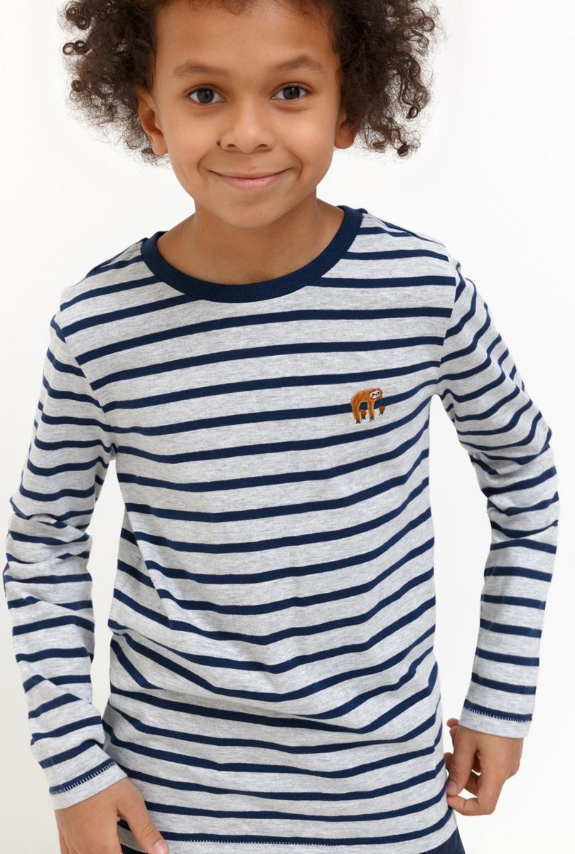 Джемпер для мальчика Acoola, цвет: разноцветный. 20110100125_8000. Размер 15820110100125_8000