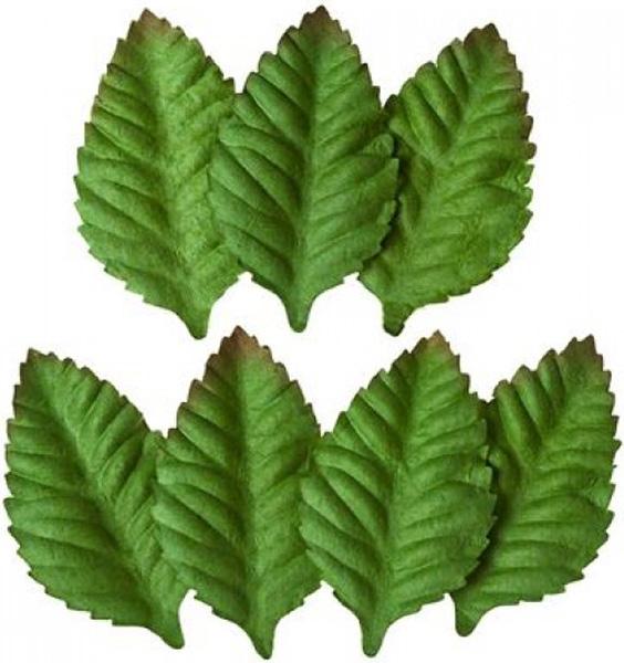 Набор декоративных листочков ScrapBerrys Мелкие листья розы, цвет: зеленый, 7 шт694895Набор декоративных листочков ScrapBerrys «Мелкие листья розы» - заготовка для работы в технике скрапбукинга, создания небольших букетиков из искусственных цветов..Материал: шелковичная бумага.Размер листочка: 5,5 х 3,7 см.В наборе 7 шт.