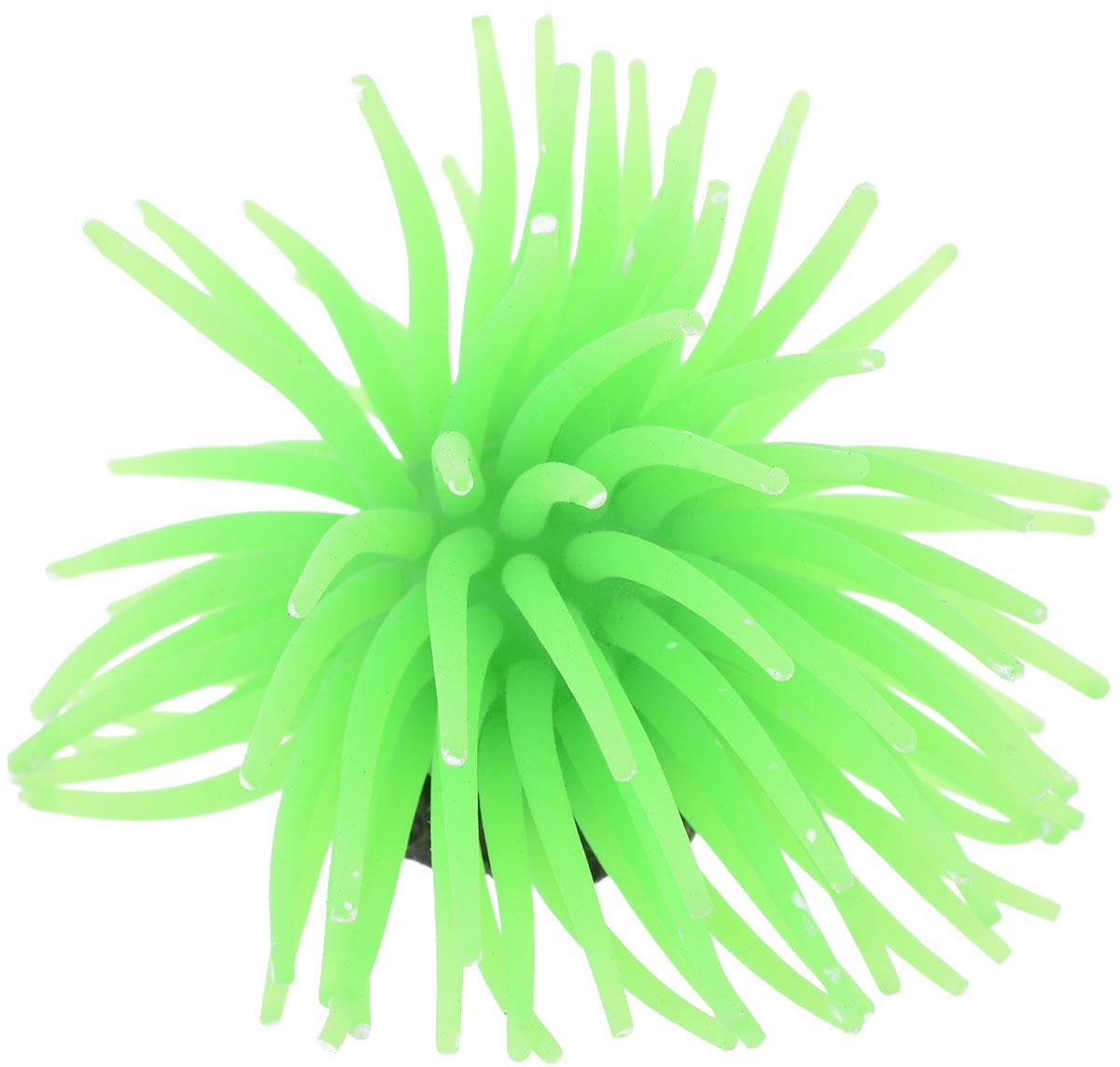 Коралл для аквариума Уют Разноцветные щупальца, силиконовый, цвет: зеленый, 8 х 8 х 7 см игрушка плюшевая для собак multi tex утка цвет зеленый желтый коричневый 19 см х 20 см х 8 см