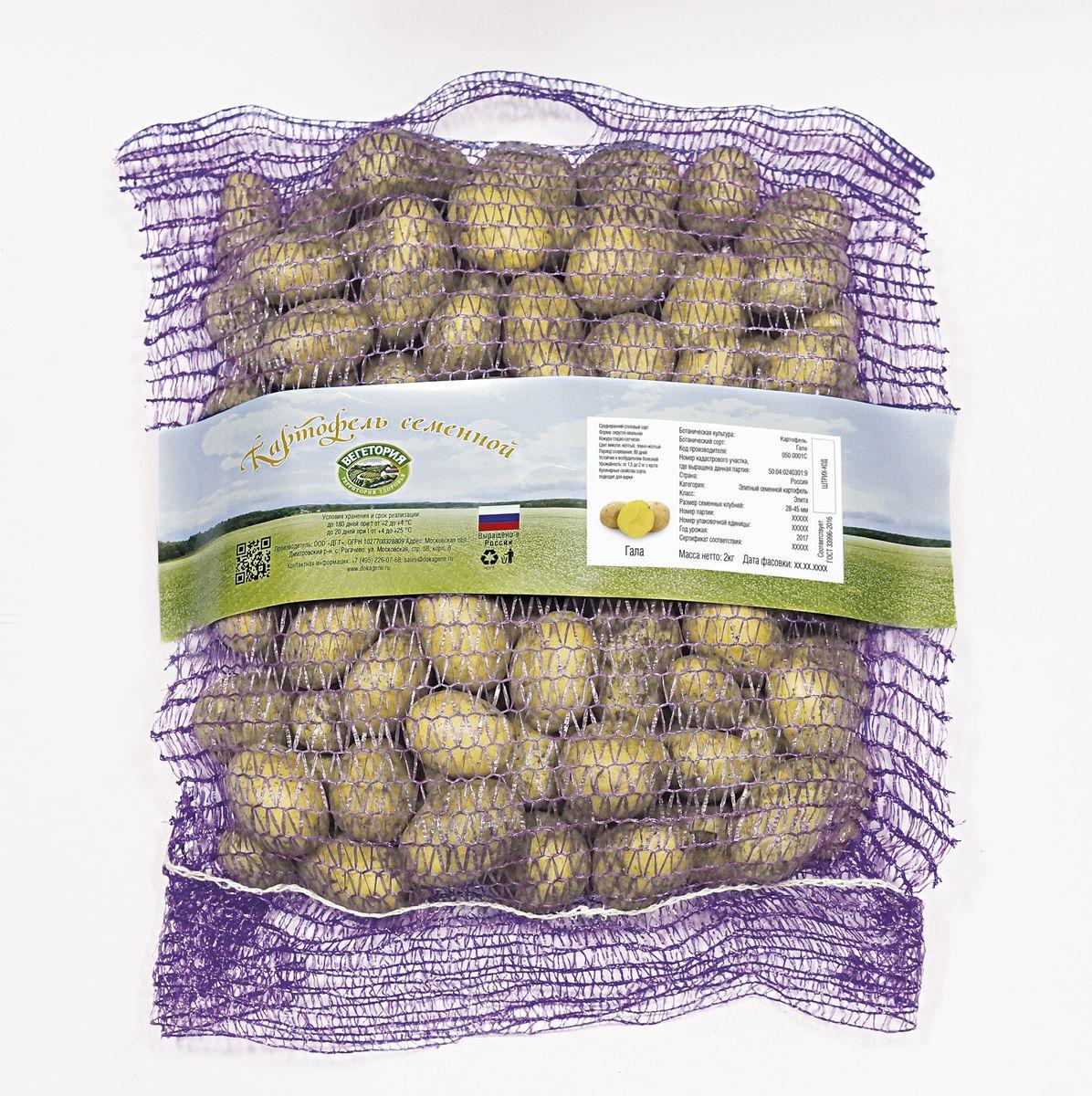 Картофель семенной Вегетория Гала Элита, 2 кг в казахстане мини клубни картофеля
