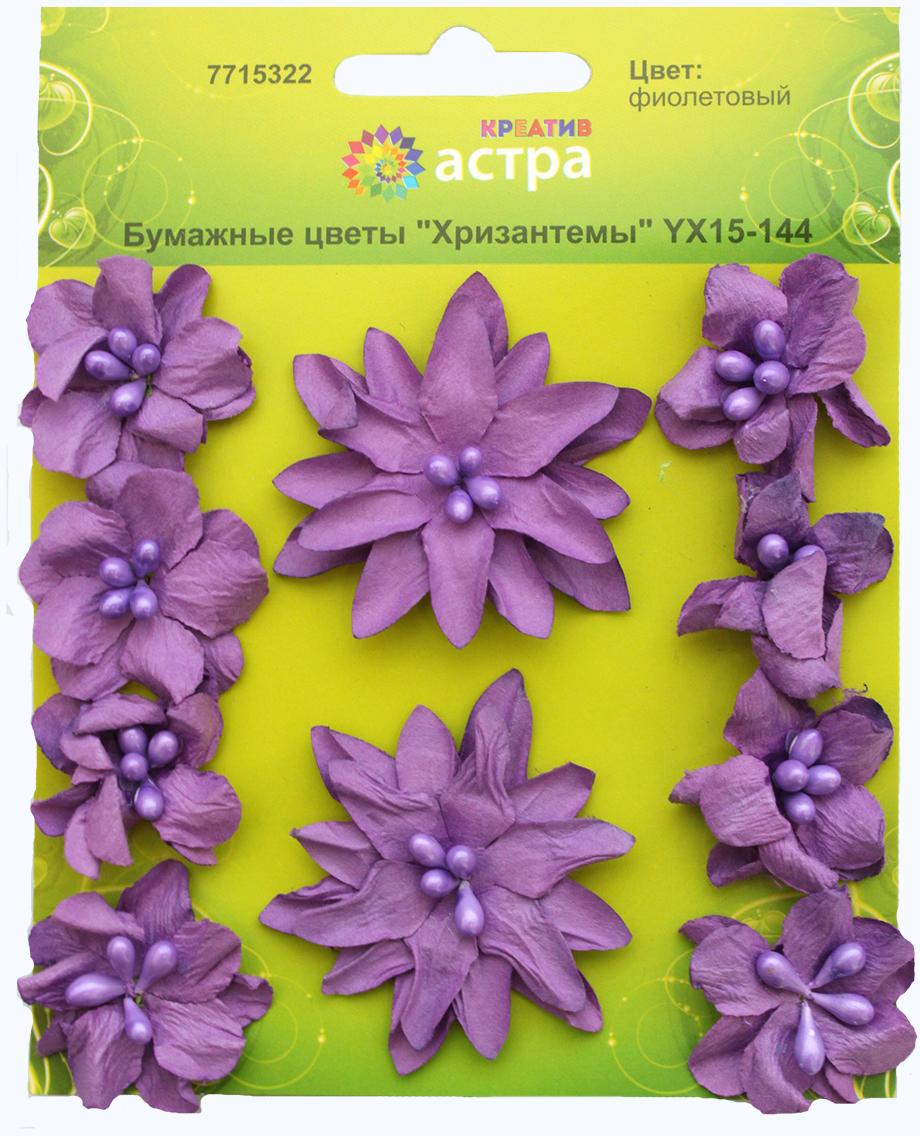 Набор декоративных цветов Астра Хризантемы, цвет: фиолетовый 3 х 5 см, 10 шт7715322_фиолетовыйХризантемы изготовлены из шелковичной бумаги. Бумажные цветы - популярное и недорогое украшение в скрапбукинге и других творческих техниках. Диаметр цветков: 3 см, 5 см.В наборе 10 шт.