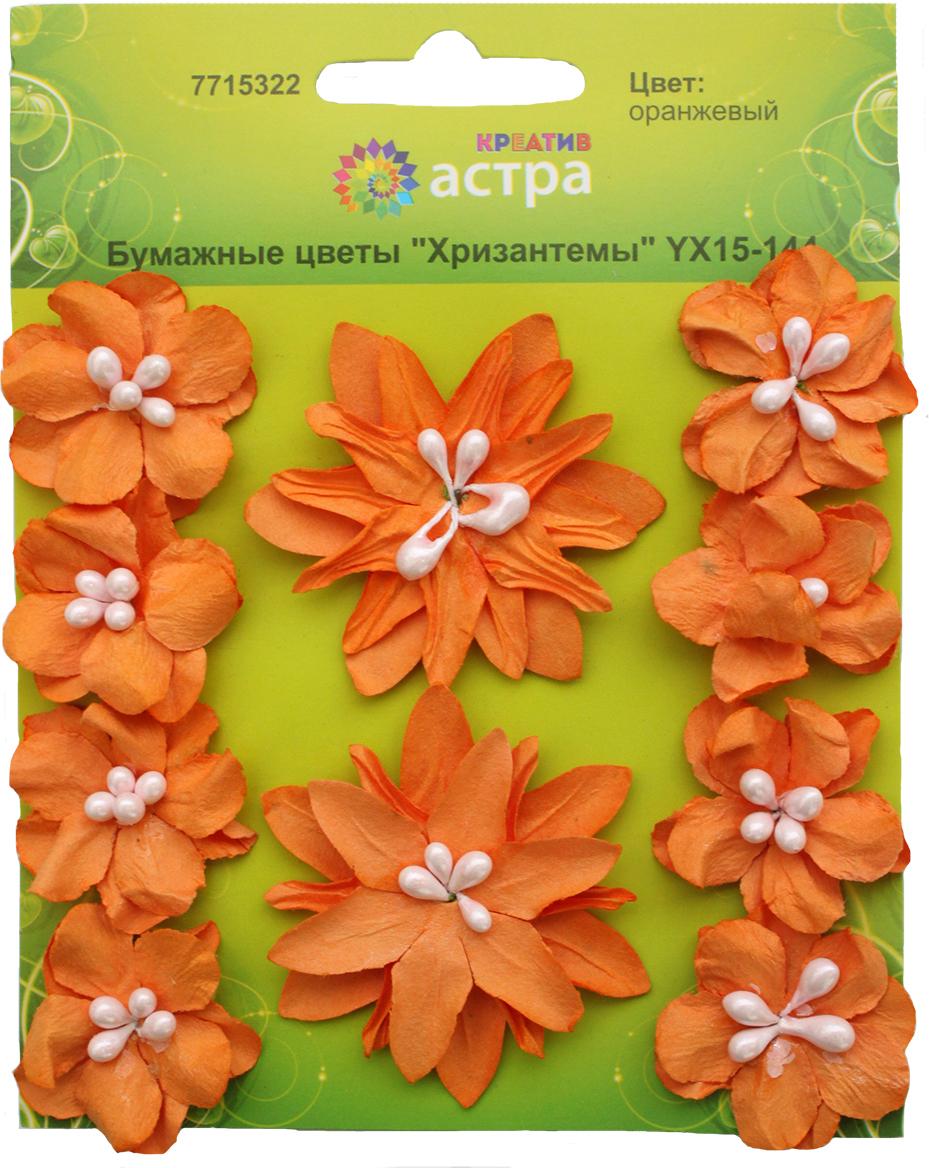Набор декоративных цветов Астра Хризантемы, цвет: оранжевый 3 х 5 см, 10 шт7715322_оранжевыйХризантемы изготовлены из шелковичной бумаги. Бумажные цветы - популярное и недорогое украшение в скрапбукинге и других творческих техниках. Диаметр цветков: 3 см, 5 см.В наборе 10 шт.