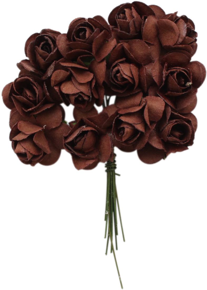 Набор декоративных цветов Астра, цвет: коричневый, 2 х 2 см, 24 шт7715384_E19 коричневыйНебольшие букетики на проволочном стебельке. Назначение: скрапбукинг, декорирование открыток, рамок для фотографий, другие виды творчества.Размер: 2х2 см.В упаковке 24 цветка.