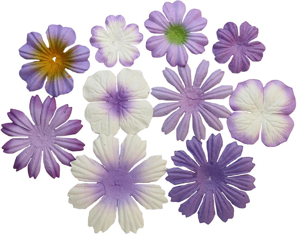 """Набор декоративных цветов """"ScrapBerry"""
