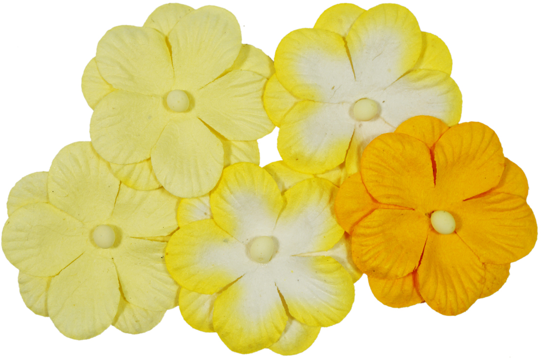 Набор декоративных цветов ScrapBerrys Анютины глазки, двойные, цвет: желтый, 5 шт694867_02 желтыйДвойные цветочки с тиснением. Для создания объемных цветочных композиций на рамках для фотографий, обложках блокнотов, фотоальбомов и др.Материал: бумага шелковичного дерева.Размер одного цветка: 3,5 см.В упаковке 5 шт.