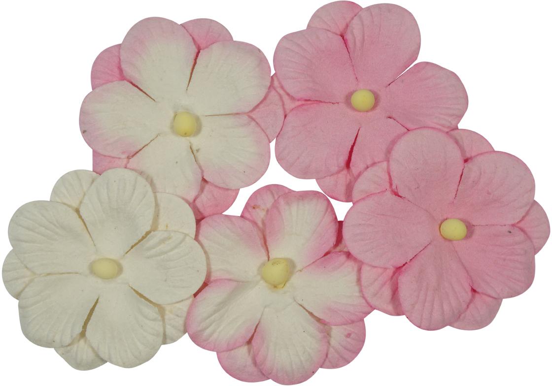Набор декоративных цветов ScrapBerrys Анютины глазки, двойные, цвет: розовый, 5 шт694867_05 розовыйДвойные цветочки с тиснением. Для создания объемных цветочных композиций на рамках для фотографий, обложках блокнотов, фотоальбомов и др.Материал: бумага шелковичного дерева.Размер одного цветка: 3,5 см.В упаковке 5 шт.